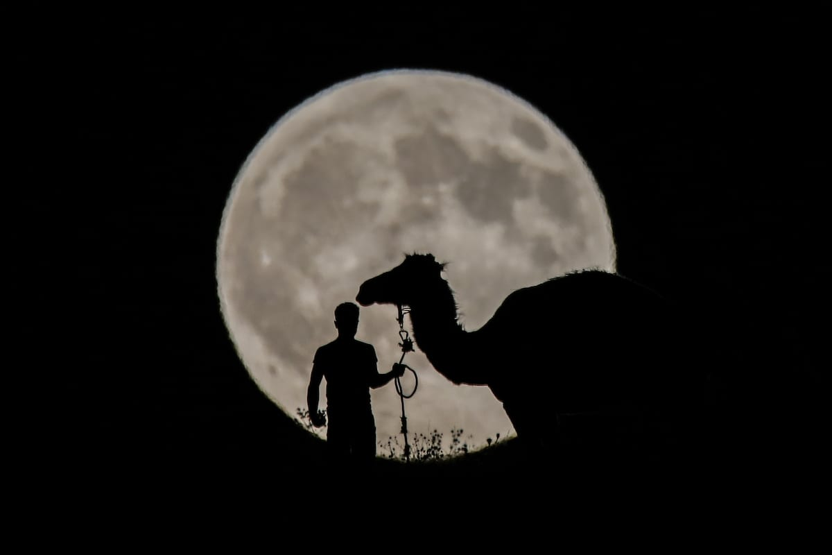 A man walks with his camel during the Partial Lunar Eclipse in Van, Turkey on 7 August, 2017 [Ali İhsan Öztürk/Anadolu Agency]