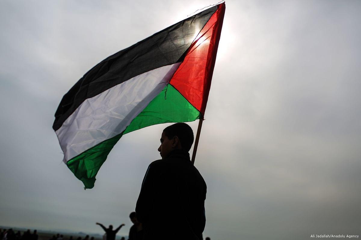A Palestinian boy holds a Palestinian flag [Ali Jadallah/Anadolu Agency