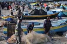 Gaza fishermen catch sardines [Mohammed Asad/Middle East Monitor]