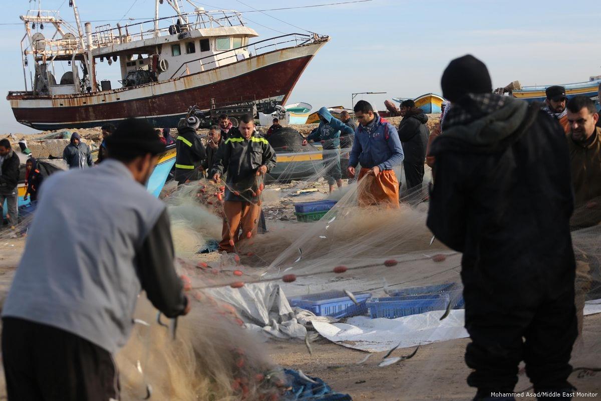 Deze afbeelding heeft een leeg alt-atribuut; de bestandsnaam is 2018_1-23-Gaza%E2%80%99s-fishermen-catch-sardines-5.jpg