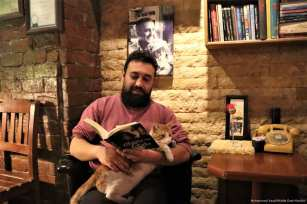 A visitor reads a book as a cat sits his lap at a cafe belonging to Turkish man, Suat Kilic, who allows stray animals to enter his cafe [Mustafa Ünal Uysal/Anadolu Agency]