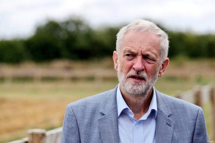 Was Labour's anti-Semitism row fuelled by pro-Israeli social media 'guerrilla warriors'?