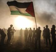 When humanity in Gaza sinks into political nihilism