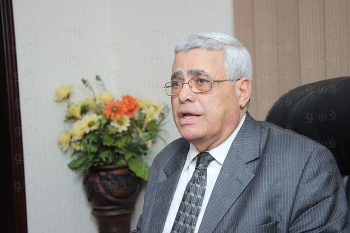 Professor of Political Science at Cairo University Hassan Nafaa