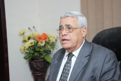 Professor of Political Science at Cairo University Hassan Nafaa