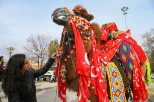 """A woman pets a camel during the 8th """"Fanciest Camel"""" competition organized within the 37th Traditional Selcuk Efes Camel Wrestling Festival at Selcuk Station Square in Turkey on 19 January 2019 [Emin Mengüarslan/Anadolu Agency]"""