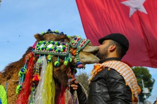 """A man pets a camel during the 8th """"Fanciest Camel"""" competition organized within the 37th Traditional Selcuk Efes Camel Wrestling Festival at Selcuk Station Square in Turkey on 19 January 2019 [Emin Mengüarslan/Anadolu Agency]"""