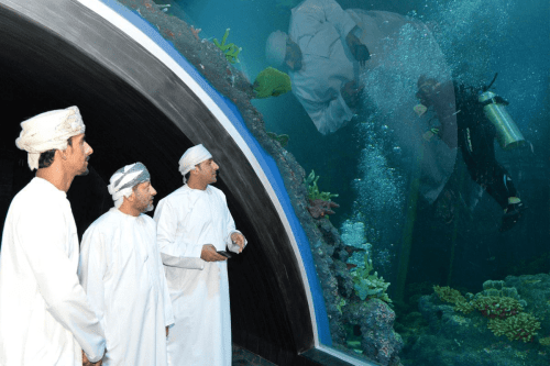The aquarium has a focus on marine conservation, education and enriched visitor entertainment experiences [Oman Tourism Twitter]