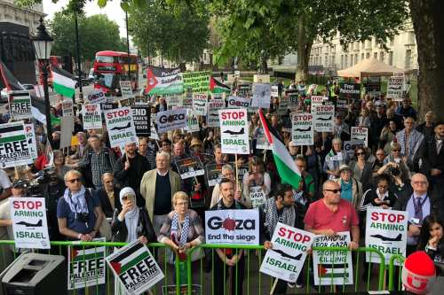 Protests in London supporting Palestine against 'attempts to annihilate the cause'