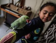 """The """"Animal Friend"""" initiative teaches the children how to take care of animals. Rasheed keeps all sorts of creatures and introduces children to them in Gaza on 13 June 2019 [Mustafa Hassona/Anadolu Agency]"""