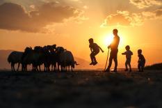 Silhouettes of a shepherd and his children near sheep in a field near Lake Van's coast in Edremit district during the sunset on 13 June, 2019 in Turkey's eastern Van province [Özkan Bilgin/Anadolu Agency]