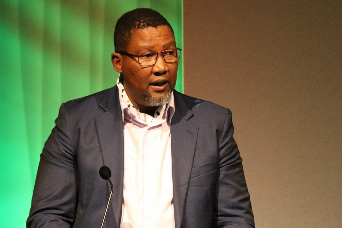 South African MP, Nkosi Zwelivelile Mandela, addresses the crowds at the Palestine Expo 2019 on 6 July 2019 in London, UK [Middle East Monitor]