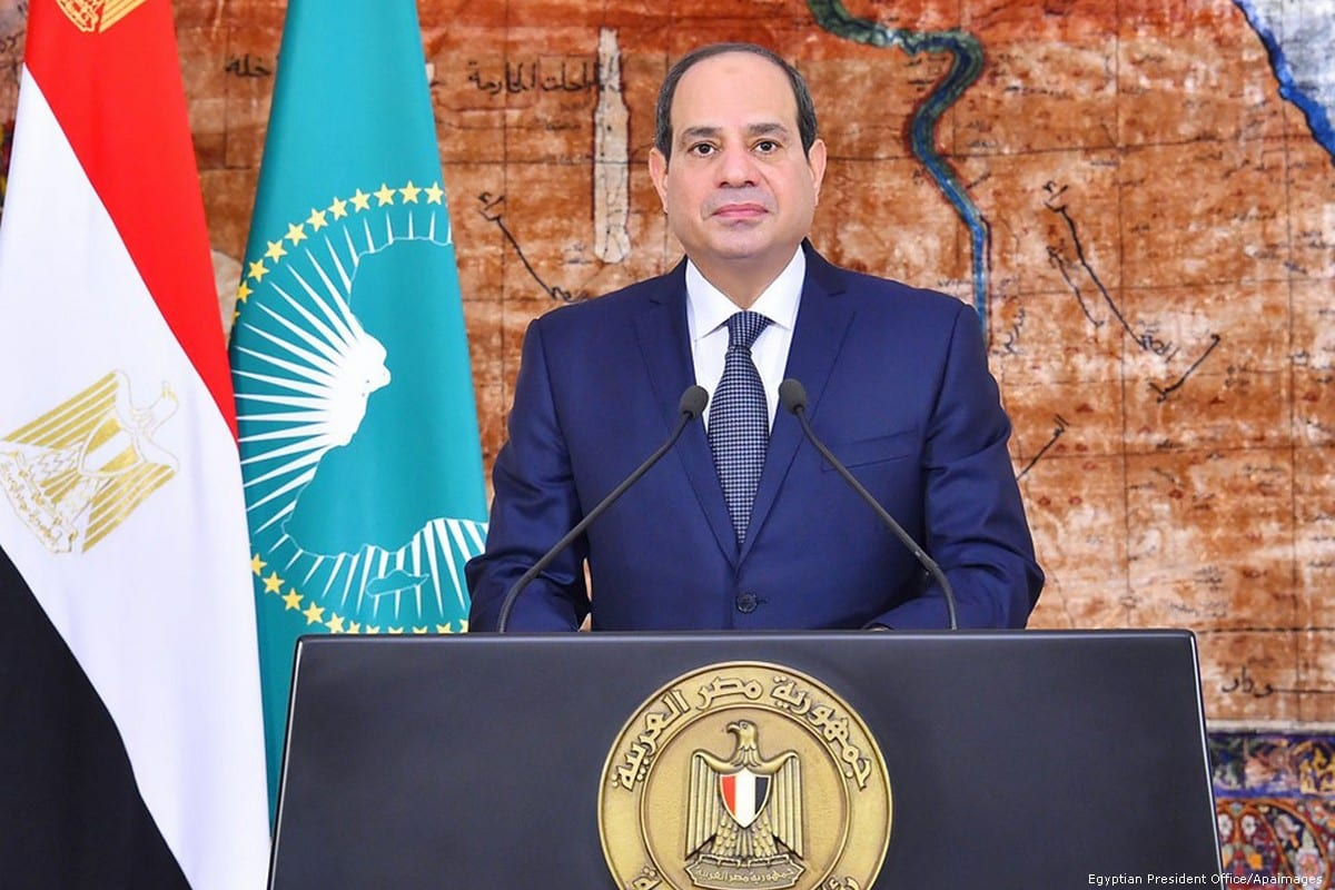 Egyptian President Abdel-Fattah al-Sisi speaks during the celebration of Africa Day, in Cairo, Egypt, on 25 May, 2019 [Egyptian President Office]