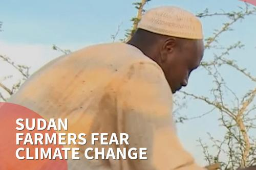 Thumbnail - Sudan farmers' harvest decimated by climate change