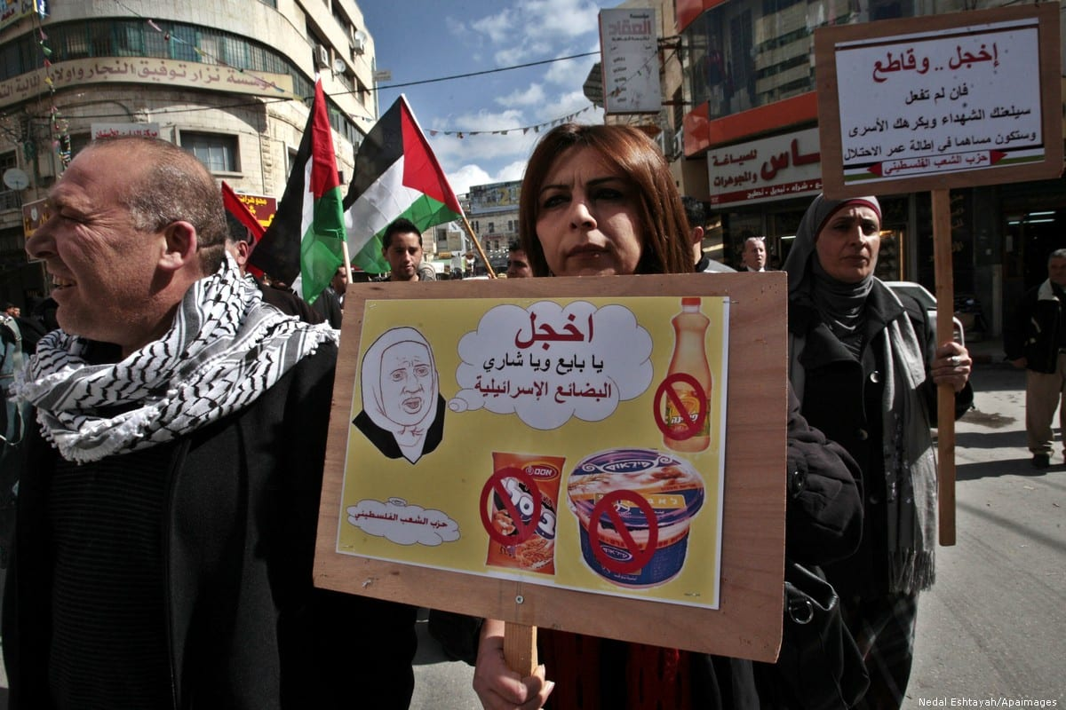 Palestinians call for a boycott of Israeli goods, and goods produced in Israeli settlements in the West Bank city of Nablus on 7 February 2013 [Nedal Eshtayah/Apaimages]