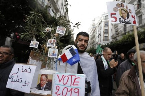 'The fruits of Bouteflika's regime?' Algerian protesters earlier [AP]