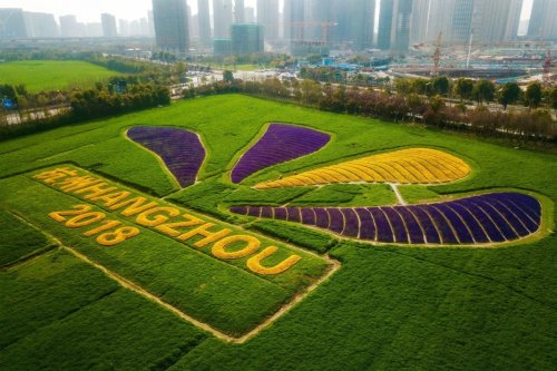 This aerial photo taken on March 26, 2019 shows different coloured flowers used to create the logo of the 19th Asian Games near the under-construction venues in Hangzhou in China's eastern Zhejiang province. - Hangzhou will host the Asian Games in 2022. [STR/AFP via Getty Images]