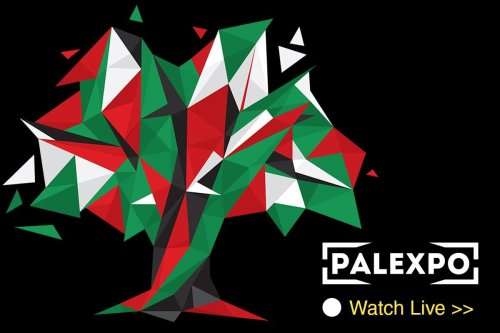 Watch the Live Stream from PalExpo 2020