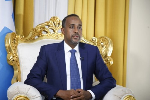 Newly appointed Mohamed Hussein Roble poses for a photo after Somali lawmakers on Wednesday approved Roble as the country's new prime minister in a landslide vote, in Mogadishu, Somalia on 23 September 2020. [Somalian Presidency - Anadolu Agency]