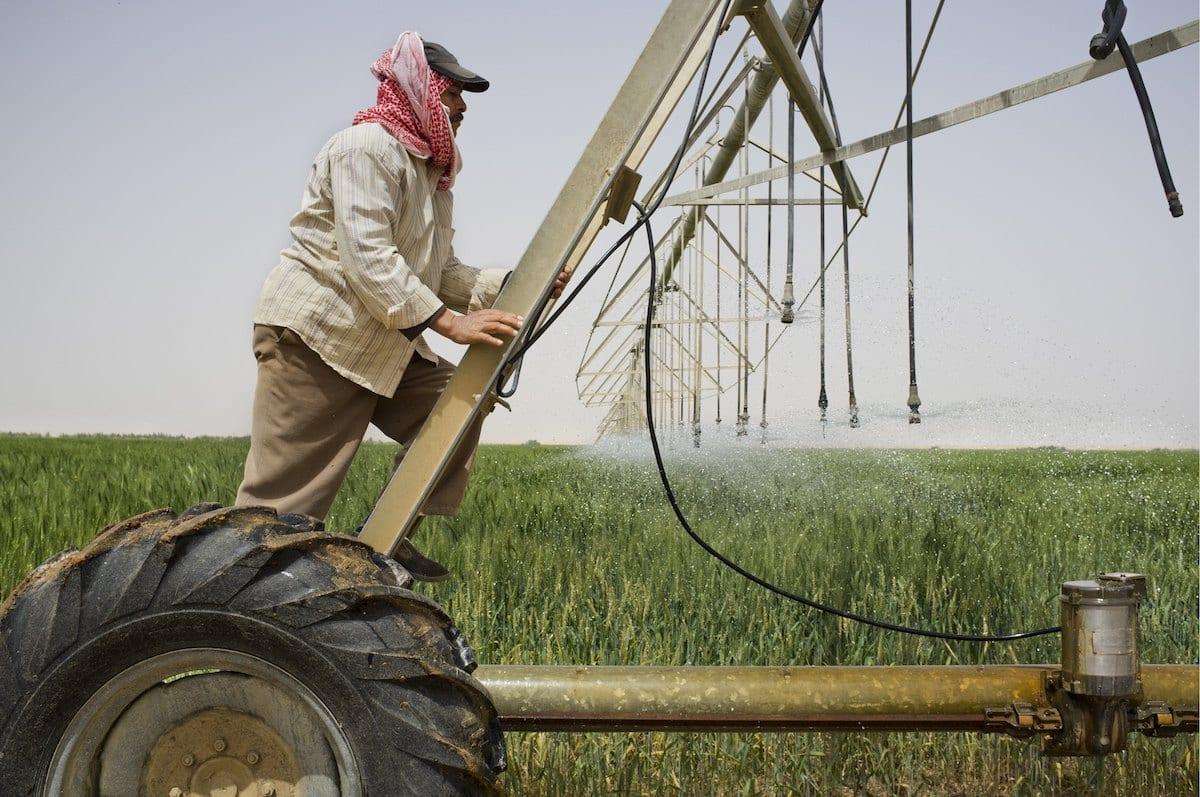 Egyptian farmer working on the fields in Saudi Arabia [David Degner/Getty Images]