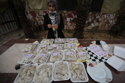 Palestinian woman using fungus to end unemployment [Mohammed Asad/Middle East Monitor]