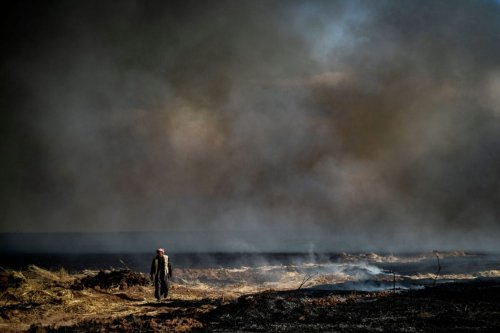 TOPSHOT - A man walks in a field as smoke billows in an agricultural field in the town of al-Qahtaniyah, in the Hasakeh province near the Syrian-Turkish border on June 10, 2019. - Fires have erupted in various parts of Syria in recent weeks, with all sides blaming each other for starting them. In the Kurdish-run breadbasket province of Hasakeh, of which Al-Qahtaniya is part, IS has claimed several arson attacks on wheat fields. (Photo by Delil souleiman / AFP) (Photo credit should read DELIL SOULEIMAN/AFP via Getty Images)