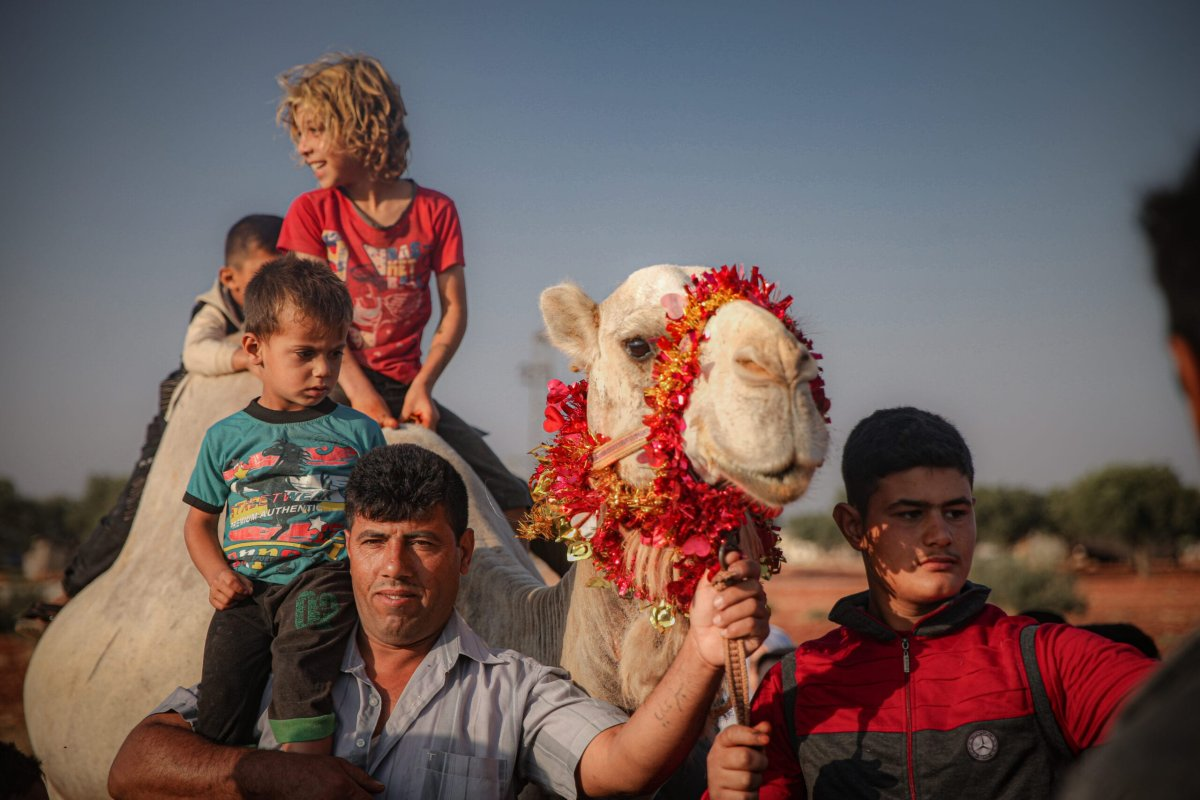 Syrian children climb on top of a camel at a camp during Eid al-Adha in Idlib, Syria on July 20, 2021. Syrians were forced leave their homes due to Assad regime's attacks [Muhammed Said/Anadolu Agency]