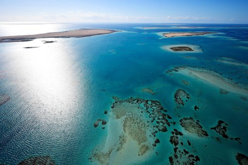 An aerial picture of the Red Sea cost in Saudi Arabia, 5 January 2020 [FRANCK FIFE/AFP/Getty Images]