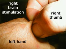 stimulating the right brain by pinching the left hand