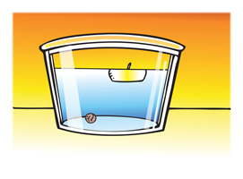 Density Sink And Float For Solids Chapter 3 Density