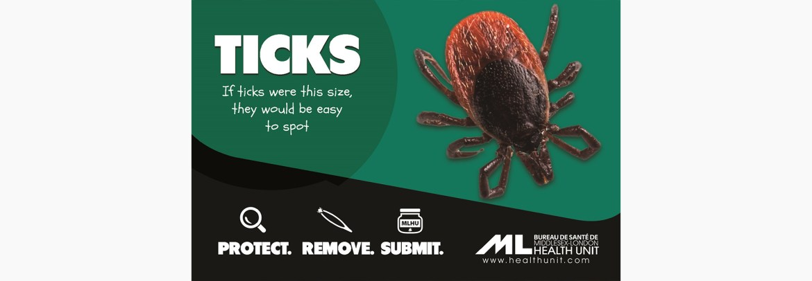 ticks_mlhu_web.jpg