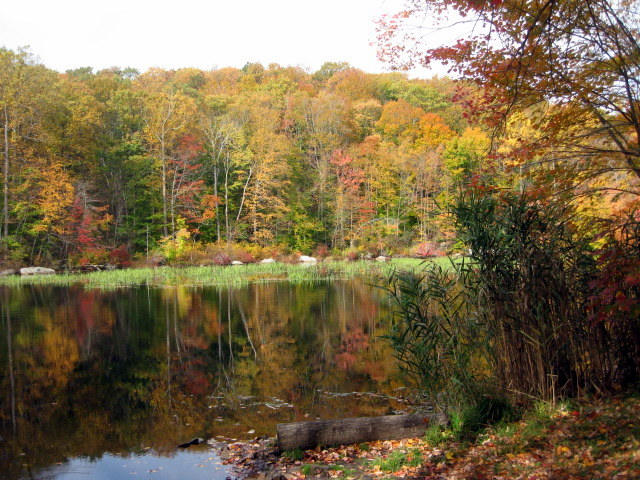 Whitney Pond, Mica Ledges Preserve, Durham