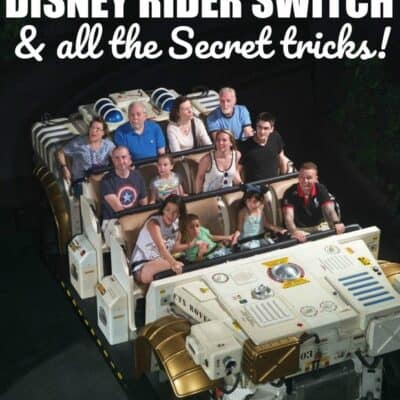 Rider Switch at Disney World