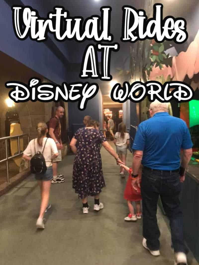 Virtual Rides at Disney World