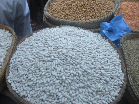 COI : Bientôt un comptoir du haricot à Maurice