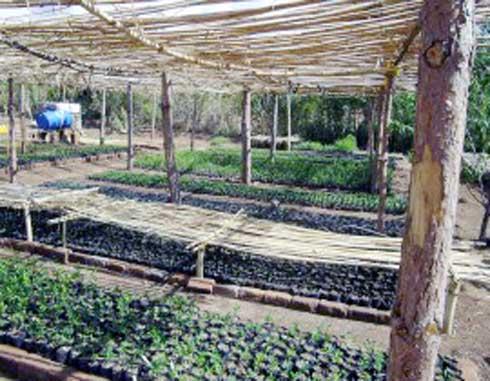 Projet PROFAPAN : Des fruits et légumes de qualité livrés à domicile