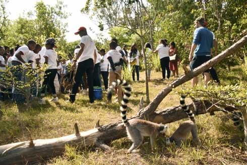 Total Madagasikara – Lemur's Park : 40.000 enfants sensibilisés à l'environnement