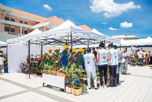 « Marché du zoma » : Un grand marché au cœur de la ville, comme au bon vieux temps