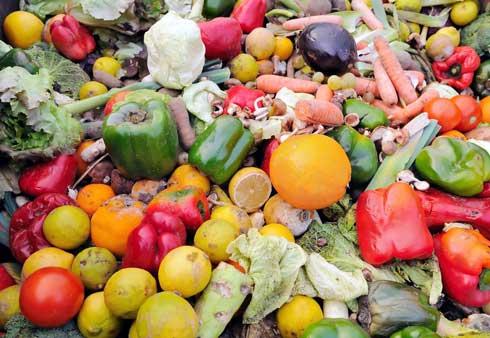 Alimentation : Le gaspillage alimentaire, un phénomène mondial à éradiquer