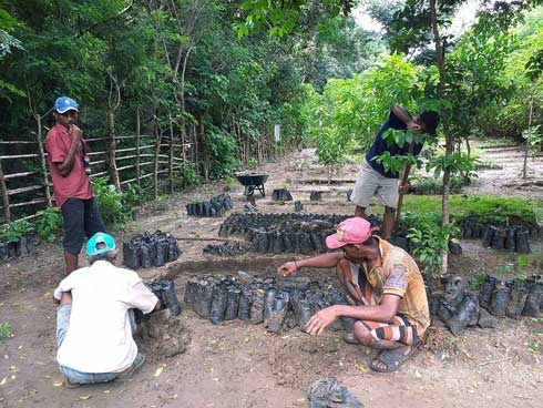 Fondation Tany Meva : 53 nouveaux projets financés en 2019