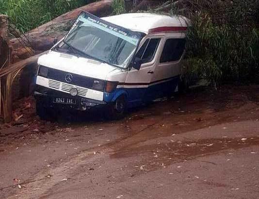 Antanandrano:Taxi-be nianjeran'ny hazobe