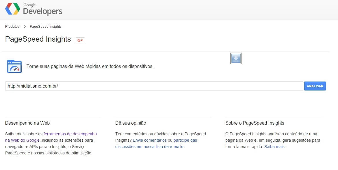 Tela do Google Developer PageSpeed Insights