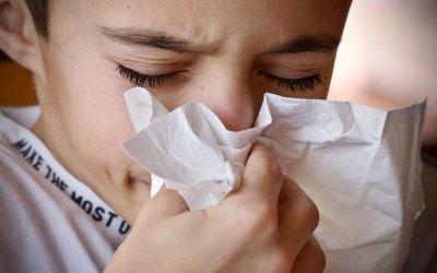 La naturopathie pour prévenir les rhinites allergiques