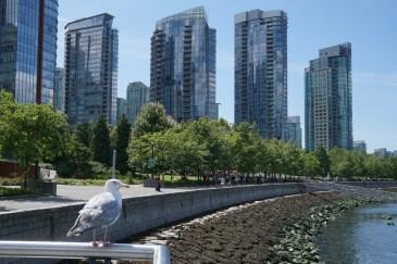 Vancouver-00923