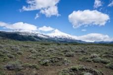 PatagonienHin-03981