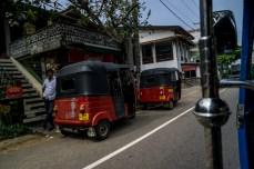 SriLanka-05026