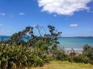 Auckland-4965