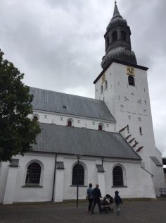 Midlife Sentence | Denmark Lindholm Hoje Aalborg