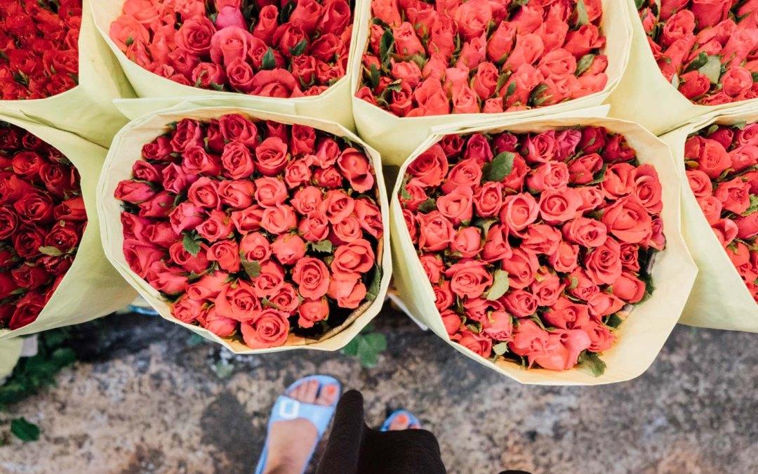 Flower power – A visit at the flower market Bangkok.