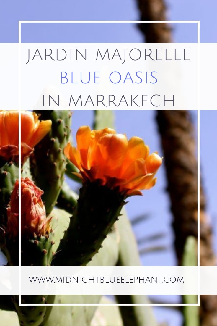 A classic and well known tourist attraction is Jardin Majorelle in Marrakech but the garden, also called the Yves Saint Laurent garden is worth all the hype - some tips for your visit. #morocco #marrakech #jardinmajorelle #yvessaintlaurent #ysl